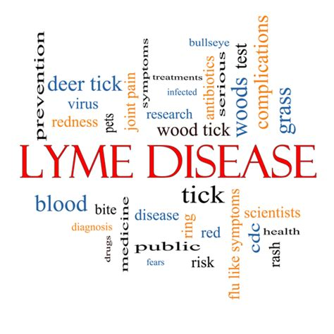 chronic lyme disease health news tips trends the best tick removal tips to avoid tick borne diseases