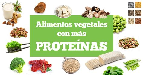 alimentos con alto contenido en proteina alimentos vegetales con m 225 s prote 237 nas delantal de alces