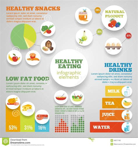 healthy fats infographic healthy infographic stock vector image 48277182