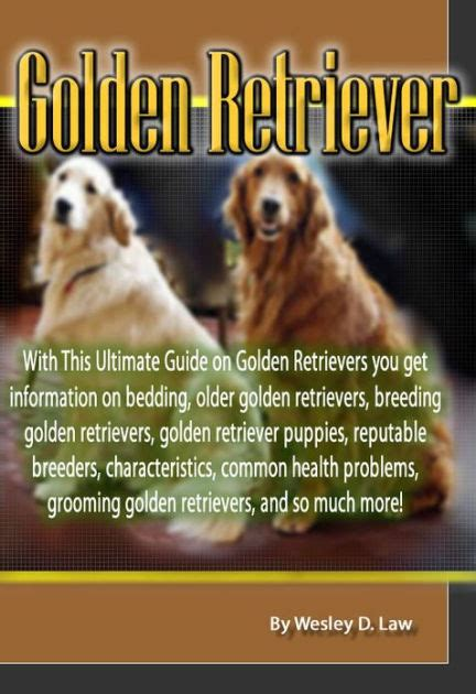 golden retriever common health problems golden retriever with this ultimate guide on golden retrievers you get information on