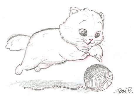 Drawing Kittens by Big Fluffy Kitten By Tombancroft On Deviantart
