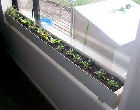 indoor window garden indoor window box garden pinterest