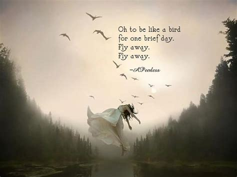 fly away fly away quotes for spiritually minded