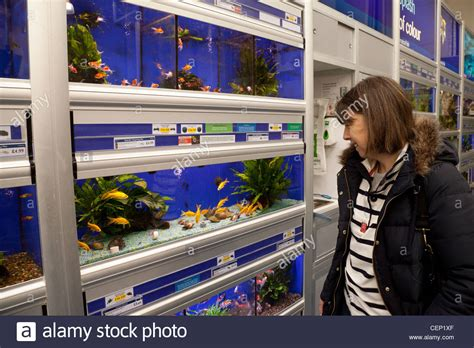 a woman looking at fish in a pet shop tank pets at home