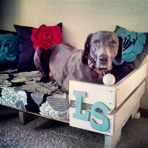 cool dog bed diy pallet dog bed furniture pallets designs