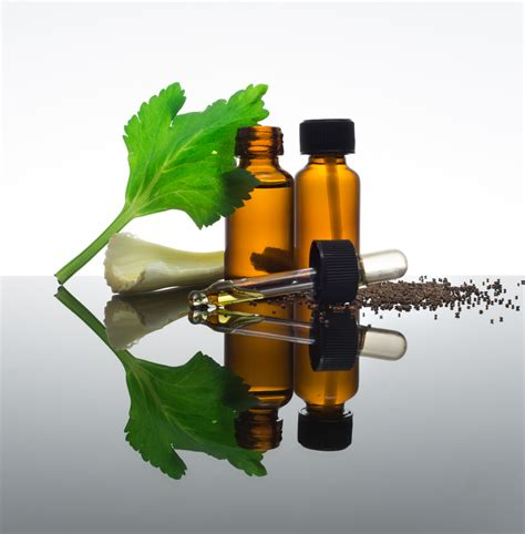 olio essenziale di sedano propriet 224 benefici usi e
