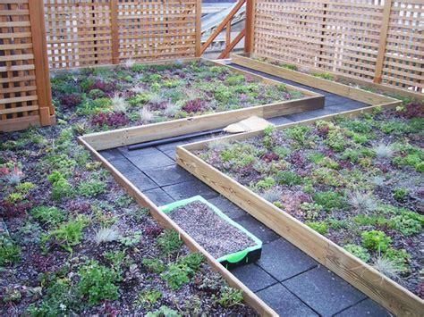 Vegetable Roof Garden Native Garden Design Rooftop Roof Vegetable Garden