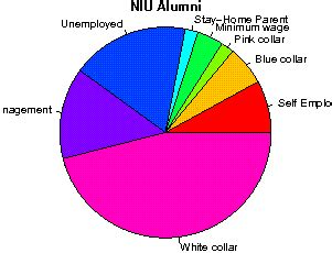 Niu Mba Review by Northern Illinois Studentsreview Alumni