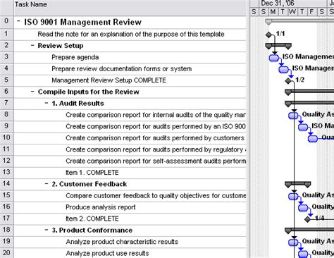 iso 9001 management review template for project 2007 or