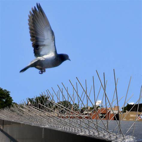 bird x irri bird repellent ribbon 100 the home