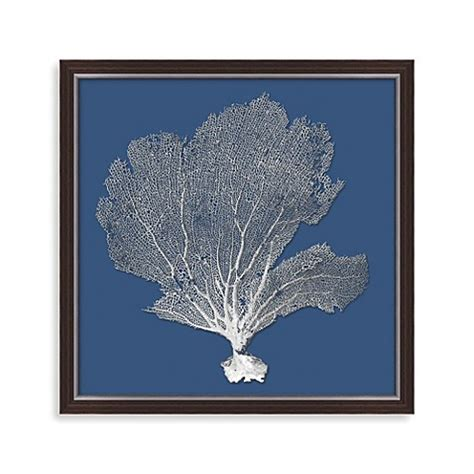 sea fan shadow box bahama sea fan shadow box bed bath beyond