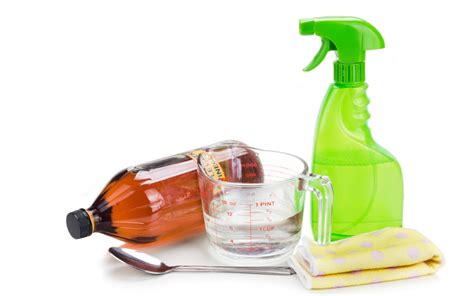 harmful household products harmful household products for pets poisonous cleaner