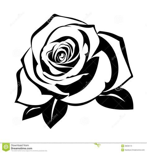 rose silhouette tattoo black silhouette leaves 28038173 jpg 1 300 215 1 353