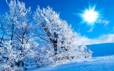 beautiful winter wallpaper sun in beautiful winter 1280x1024 hd