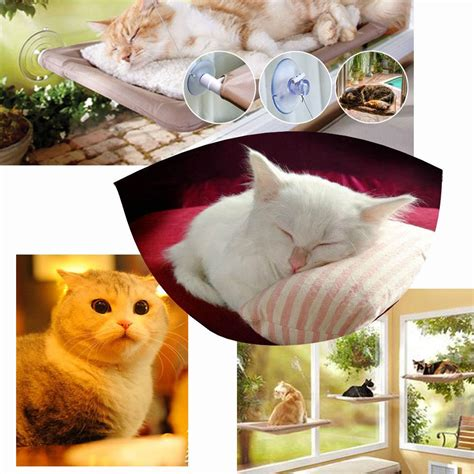 sunny seat cat bed 2017 22 12 cat window mounted bed sunny seat pets