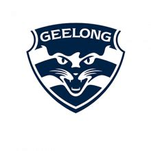 embroidery design north perth geelong cats afl travel