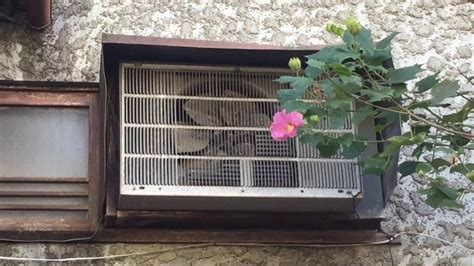 ceiling fan with air conditioner really and vintage window air conditioner and a