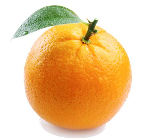 Fruity Orence orange fruit orange photo 34512881 fanpop