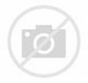 Animal Abuse and Neglect