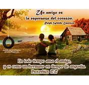 Junto Al Camino IM&193GENES CON TEXTOS B&205BLICOS SOBRE LA AMISTAD