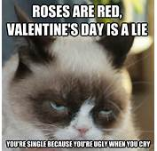 What'd You Think Send Us Your Favorite Grumpy Cat Valentine's Day