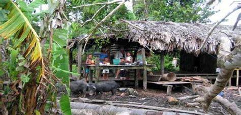 hutte sur pilotis les news 16excursions en amazonie
