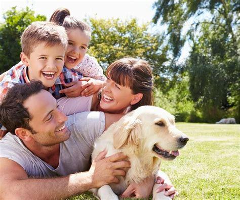 perros con personas 5 destinos ideales para viajar con tu perro expedia mx