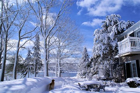 winter vacations maine rental for every time of year
