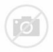 Zhenya Y114 Vladmodels Custom Download Pelauts Com