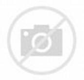 Gambar Kartun Wanita Muslimah