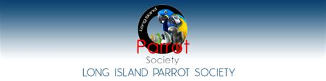long island parrot society lips rescue parrots