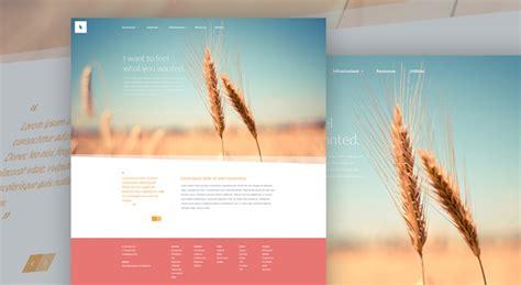 organic minimal web design template free psd psdexplorer