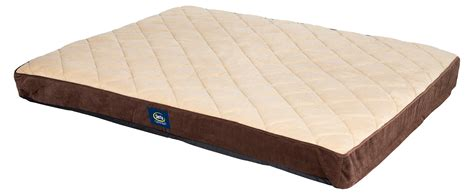 dog mattress bed serta orthopedic quilted pillowtop dog bed x large brown