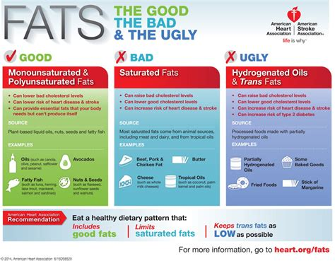 healthy fats cholesterol fats the the bad and the infographic