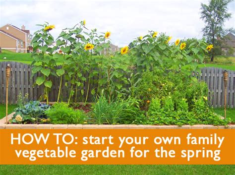 how to start a small garden in your backyard 5 tips on how to start a family vegetable garden this