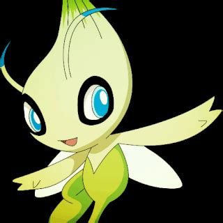 Celebi Giveaway - meet the brave birds asl draft pok 233 mon amino