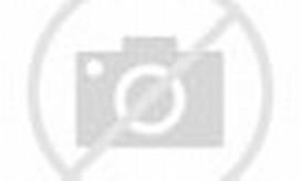 Harmoni dan Keberuntungan   Lukisan Ikan Koi