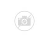 Teenage Mutant Ninja Turtle Printable Coloring Page