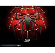 Spiderman  Spider Man Wallpaper 5848729 Fanpop