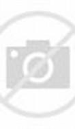 Dragon Ball Z Goku Super Saiyan 2