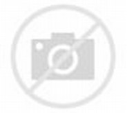 Gambar Bentuk Lemari Gantung Dapur Minimalis | Desain Rumah Minimalis