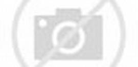 Baju Kaos Polos Hitam Depan Belakang