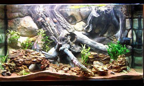 Fish Tank Designs 3d Backgrounds