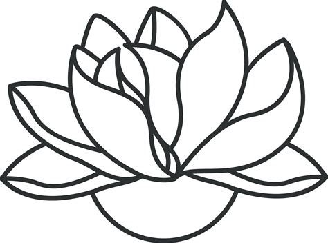 flowers line drawing images clipart best flower line drawing clipart best