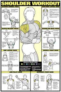 Gym workout chart for women fitness gym wall chart