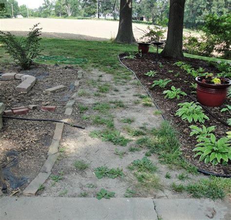 garden plans the hyper house