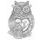 Ornate Owl – Adult Coloring Page Find The Printable Lab