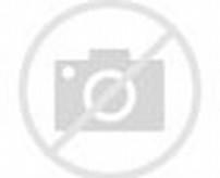 Fish Aquarium Screensaver