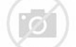HP Windows 8 Wallpaper