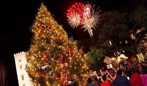baton rouge tree christmas lights service a guide to and festivity 225